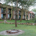 serengeti sopa lodge 1