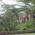 serengeti sopa lodge 4