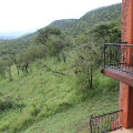 serengeti sopa lodge 14