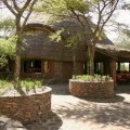 serengeti serena lodge 4