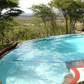 serengeti serena lodge 13