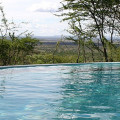 serengeti serena lodge 14