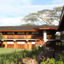 Seronera Wildlife Lodge 6