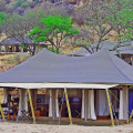 serengeti pioneer camp 2