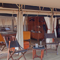 serengeti pioneer camp 6