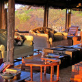 serengeti pioneer camp 9