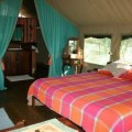 kusini tented lodge 11