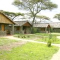 ndutu lodge 2