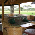 ndutu lodge 13