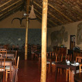 ndutu lodge 14