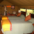 lemala ndutu camp 9