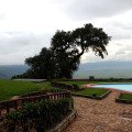 ngorongoro sopa lodge 5