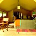 Lemala Ngorongoro Camp 2