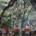 Lemala Ngorongoro Camp 4