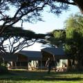 Lemala Ngorongoro Camp 5
