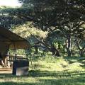 Lemala Ngorongoro Camp 8