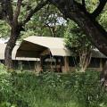 Lemala Ngorongoro Camp 9