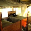 Lemala Ngorongoro Camp 10