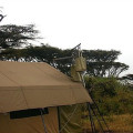 Lemala Ngorongoro Camp 16