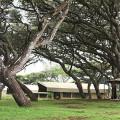 Lemala Ngorongoro Camp 19