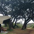 Lemala Ngorongoro Camp 21