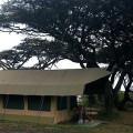 Lemala Ngorongoro Camp 25