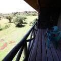 Rhino Ngorongoro Lodge 16