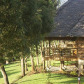 Ngorongoro Exploreans Lodge 1