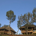 Ngorongoro Exploreans Lodge 18
