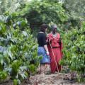 Ngorongoro Farm House 11