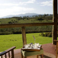 Ngorongoro Farm House 15