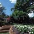 Gibbs Farm 1