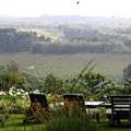 Gibb's Farm 3