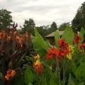 Tloma Lodge 18