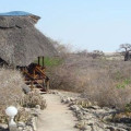 Manyara Wildlife Safari Camp 12
