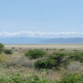 Manyara Wildlife Safari Camp 13