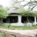 Lake Manyara Serena Lodge 1
