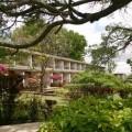 Lake Manyara Hotel 2