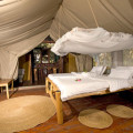 Migunga Tented Lodge 6