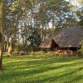 Migunga Tented Lodge 14