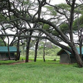 Swala Tented Lodge 3