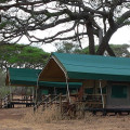 Swala Tented Lodge 4