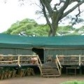 Swala Tented Lodge 6