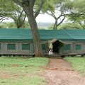 Swala Tented Lodge 7