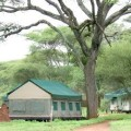 Swala Tented Lodge 10