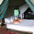 Swala Tented Lodge 13