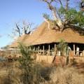 Tarangire Treetops Lodge 3