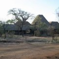 Tarangire Treetops Lodge 4