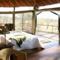 Tarangire Treetops Lodge 6