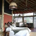 Tarangire Treetops Lodge 8